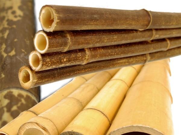 Bambusrohre - in vielen verschiedene Arten und Größen