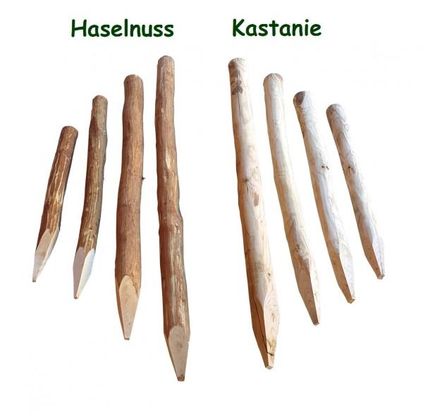 Zaunpfosten Haselnuss oder Kastanie - geschält und angespitzt