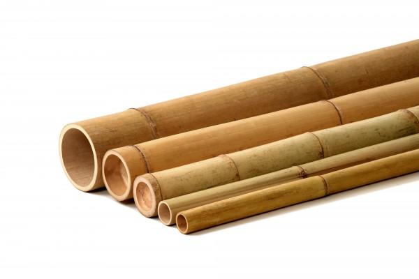 Bambusrohr - Bambusstangen in vielen verschiedenen Größen